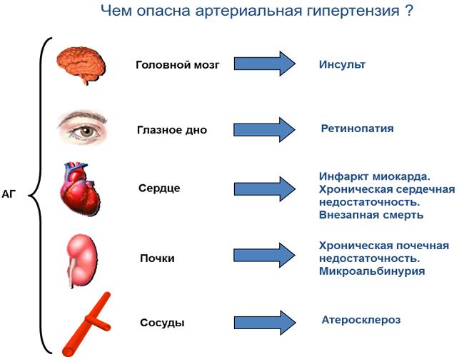 Лечение артериальной гипертензии в период лактации