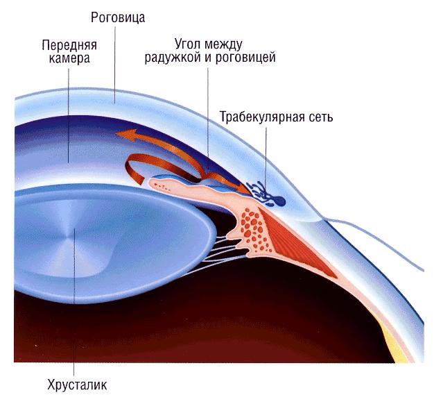 Лечение при глазном давление