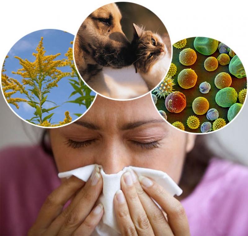 Мази от аллергии на лице