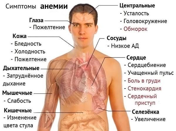 Нормальный гемоглобин у мужчин и женщин thumbnail