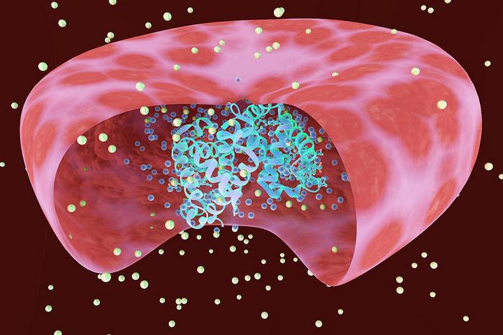 Норма гемоглобина у женщин и мужчин